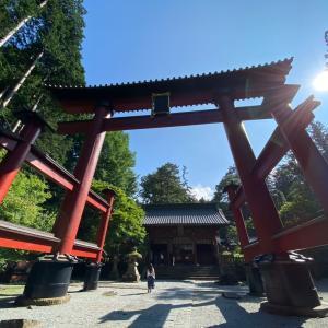 沼津といえば《魚がし鮨》 富士浅間神社へお参り