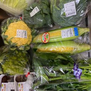 野菜の買い出し〜