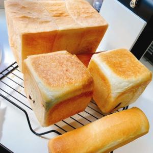 今日はパン活〜🍞 &《平日食堂》