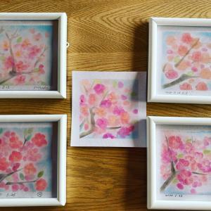 桜たくさん咲きました皆さん素晴らしい#桜#パステルカラー#パステル#パステル和ア...