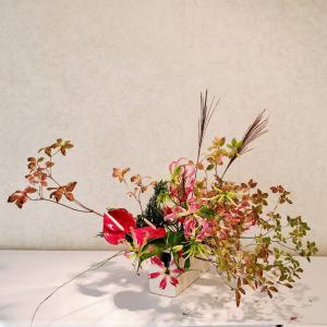 グッとくる秋の色合い、鏡つつじの紅葉と赤いグロリオーサ