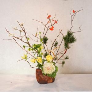大きく広げて木瓜の枝を・お正月花