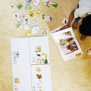 5歳長男❤︎小学校受験まであと98日