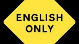 【号外】キュートなお客さん、ご来店♪【ENGLISH ONLY】