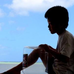 《COVID-19》ロックダウンされた街からこんにちは。(第33回)《南の島から日本を憂う⑤》