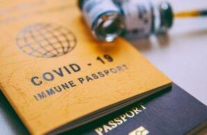 ワクチンパスポートの事を考えていたら眠れなくなったよ。(「パスポート欲しい」編・3/3)