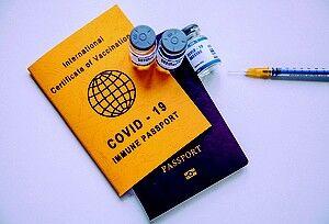 ワクチンパスポートの事を考えていたら眠れなくなったよ。(「いろいろ問題もあるんだよ」編・3/3)