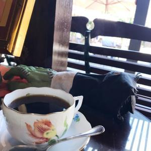 【名古屋10/31】ゆる朝活♪コミュニティが苦手な主催者