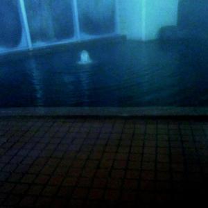 ホテルボストンの温泉施設を再訪しました。