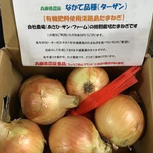 淡路島の美味しい玉ねぎ ターザン