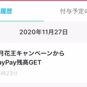 """付与されてました! PayPay花王タイアップ千円以上で40%バック"""""""