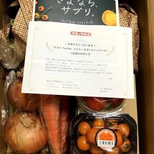 【当選】ファイトリッチ野菜Boxプレゼントキャンペーン タキイ種苗