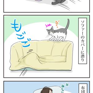 潜リスト・朔