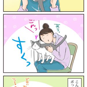 猫はやはり液体らしい