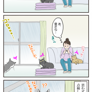 母さんの仕業