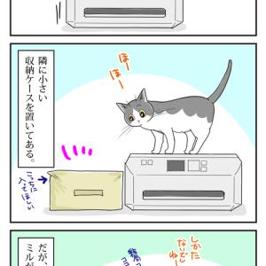 猫とプリンター