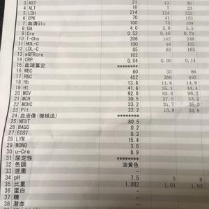 【1年273日目】通院日結果と現在の状況と!