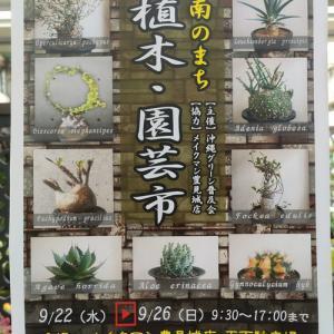 動画投稿しました♪「第11回 南のまち植木・園芸市」