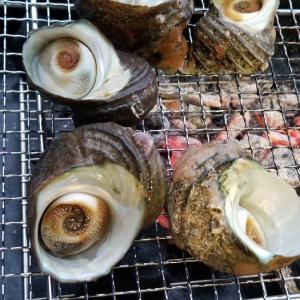 貝を焼く会