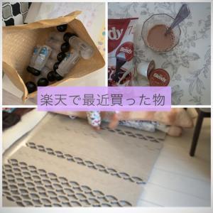 最近楽天で買ってお気に入りの物【除菌・除湿マット・牛乳嫌いがハマるココア】