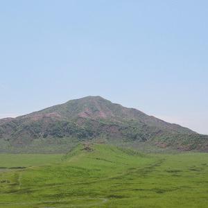 ミヤマキリシマ花見登山に行ってきました。