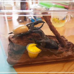 夏休み自由研究は、粘土講座でお任せください!!