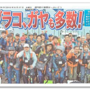 釣り新聞の室蘭沖堤防釣りツアー記 総評(2)