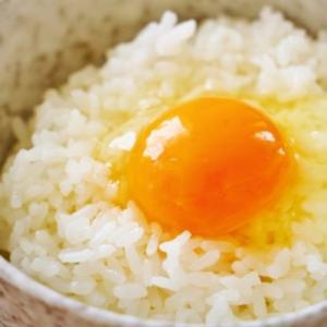 お米を食べると太る? 太らない食べ方