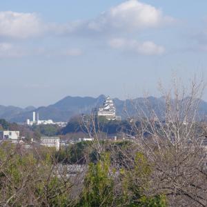 名古山にて(2020/1/11)其の③