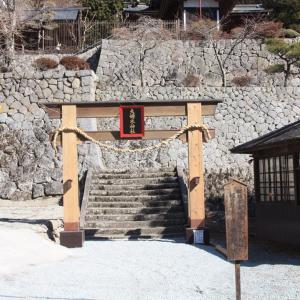 【山梨県】夫婦木神社