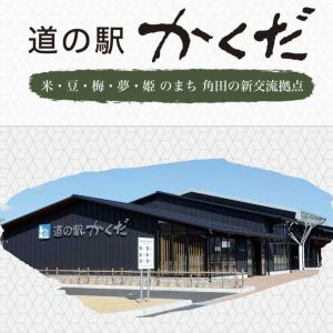 青梅を買いに角田へ!