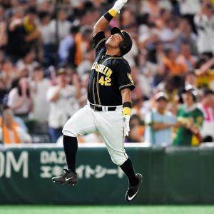 阪神ソラーテが自由契約に、打率.188、4本塁打9打点と結果残せず NPBが公示