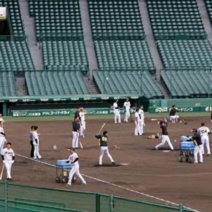 矢野阪神、ロングティーで再発進!打ち勝つ野球へ 将「課題は点取ること」