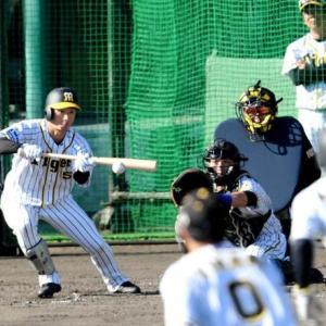 阪神・近本2番!バント猛練習 矢野監督「2番に入ってくれるとありがたい」