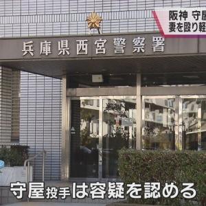 阪神・守屋、妻への暴力容疑を認める