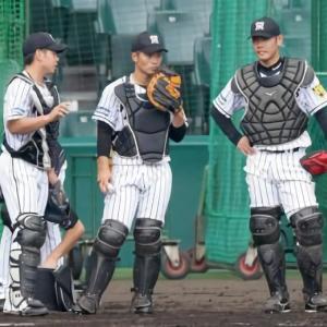 阪神・梅野、原口、坂本 正捕手争い