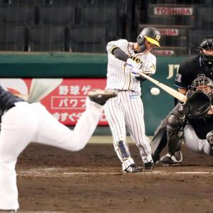 阪神近本、2戦連続マルチ安打の好調も「まだまだ」