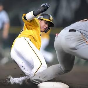 阪神・矢野監督「中身がしっかりある盗塁」梅野&木浪でダブルスチール