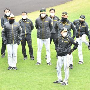 矢野阪神の来季リベンジに好都合? 今年はコロナ禍で〝チヤホヤ激減〟極寒オフ