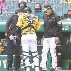 虎党も一安心 負傷交代の阪神・梅野について矢野監督が言及「ちょっと腫れたから。たぶん大丈夫だと思う」