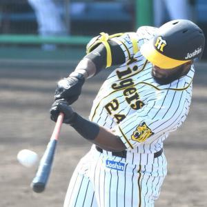 阪神ロハス初昇格決定 「ちょっと見てみる」矢野監督明言 チェン一旦抹消