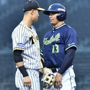 阪神・佐藤輝明とヤクルト・オスナが三塁ベース上で一触即発状態に