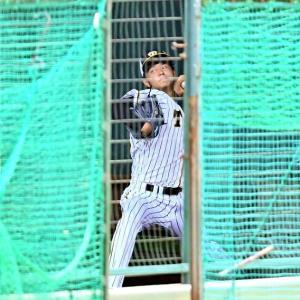 好調阪神さらなる朗報 高橋遥人が投球再開 8日からブルペン入りしていた