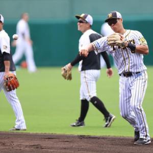 佐藤輝明が二塁でノック、軽快な動き 阪神が18日巨人戦へ甲子園練習
