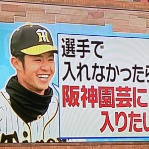阪神ドラ6中野拓夢さん、将来の夢は阪神園芸への就職だったwwwww