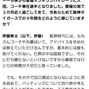 元阪神タイガース伊藤隼太さん「阪神時代は誰も助けてはくれなかった」