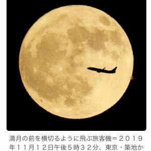 昨夜のお月さま…大きくて眩しいほどに綺麗でしたよ❣️