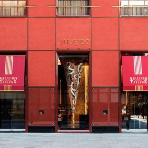 資生堂パーラー銀座本店限定…ガトークレーム  オ  ブール、芸術的な逸品は毎日数個のみの販売