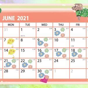 6月のワークショップ、レッスン  ※随時更新