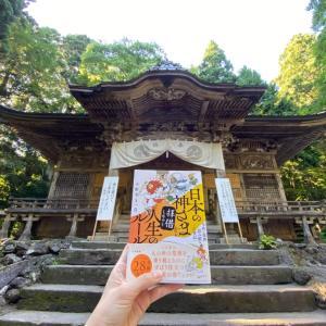 始まりのあの神社。そして今、このブログを読んでいるあなたへのお礼です。